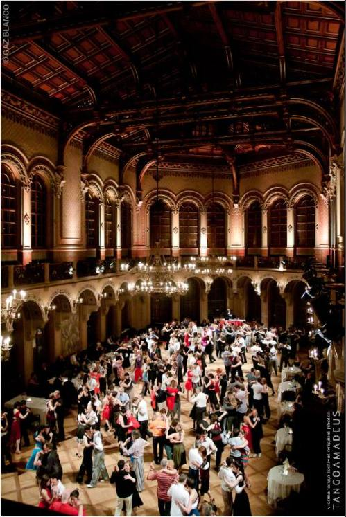 "Фестиваль ""Tango Amadeus"" в Вене. Фото: Gaz Blanco"